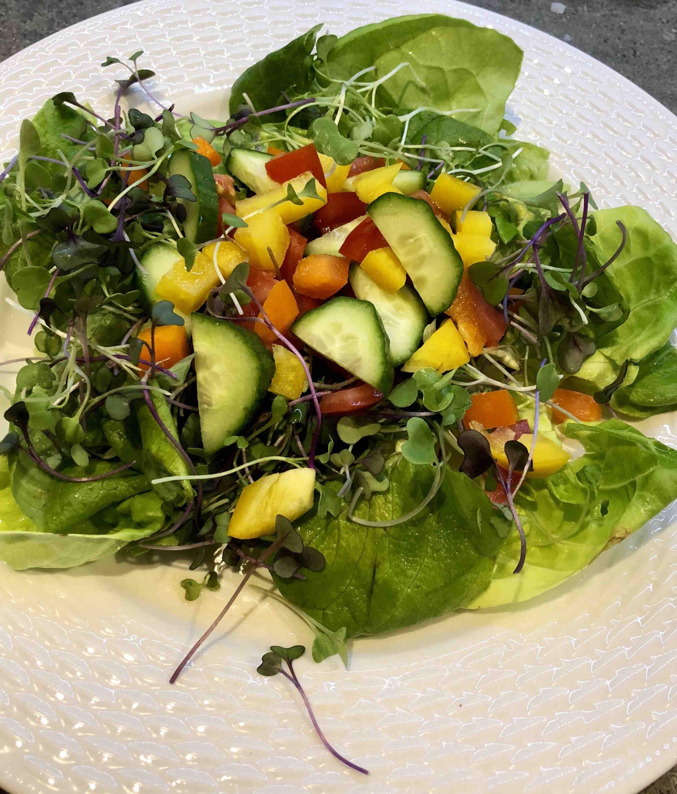 local micro green salad
